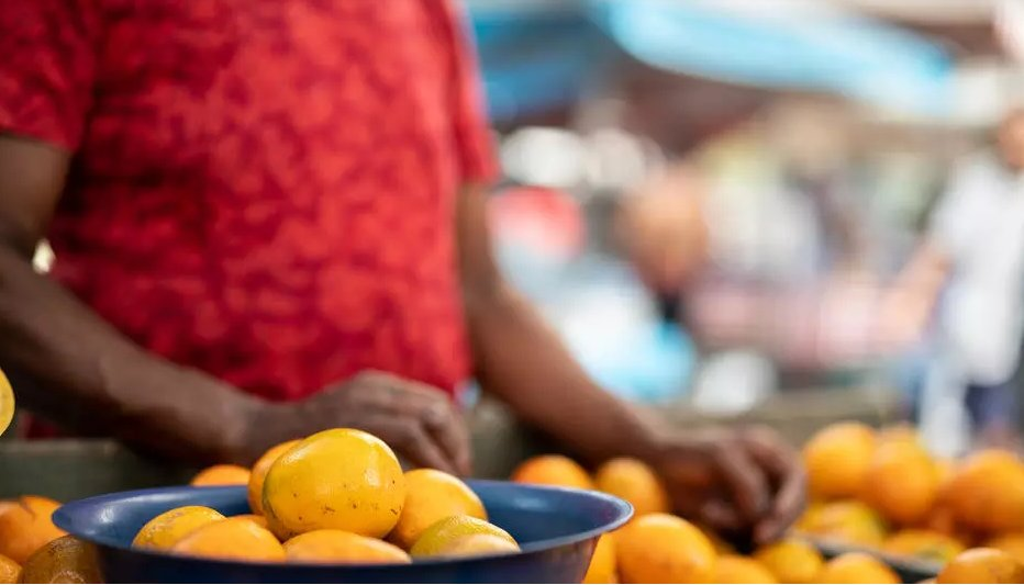 Ong suíça denuncia situação precária dos colhedores de laranjas no Brasil