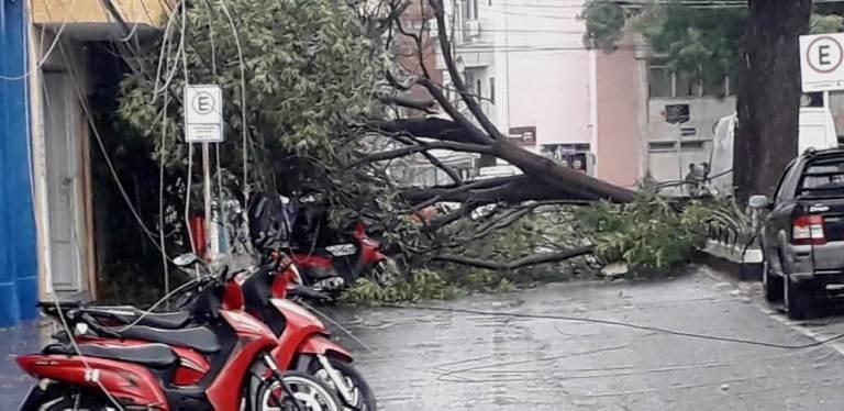 Chuva de 45 mm acompanhada de fortes ventos é o suficiente para causar estragos em Patos